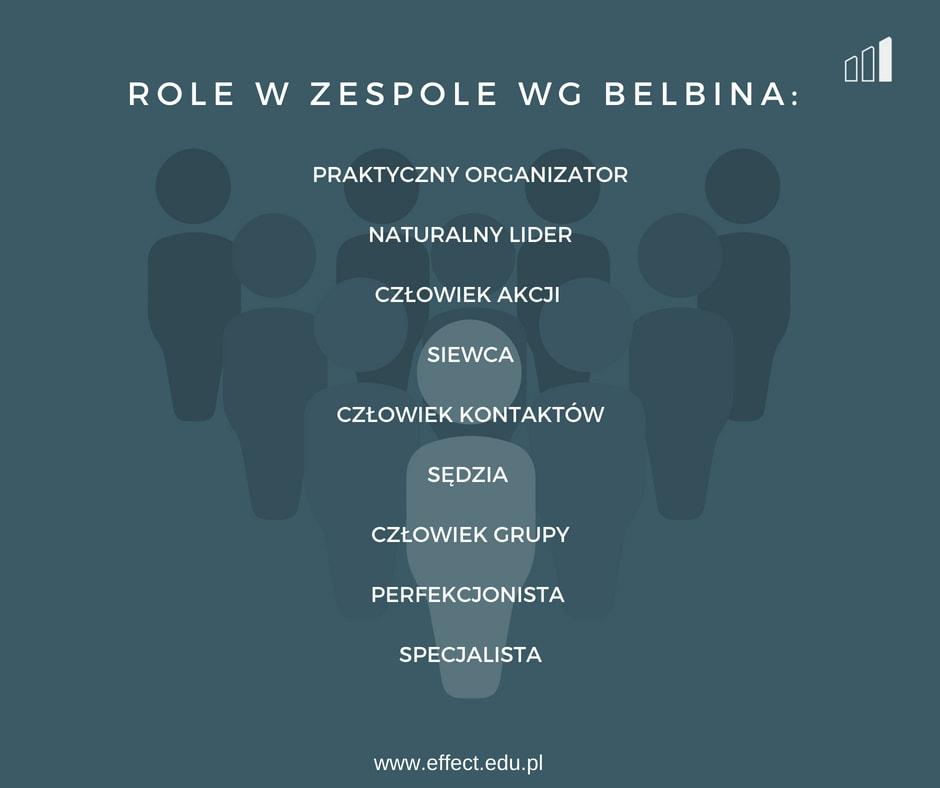 role-grupowe-Belbina